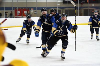 hockey_3886