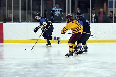 hockey_3824