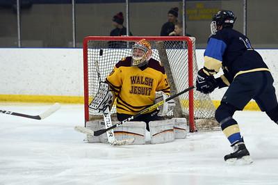 hockey_4936