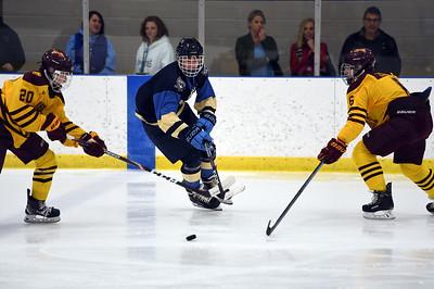 hockey_4833