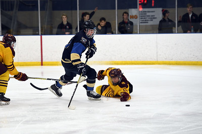 hockey_4925