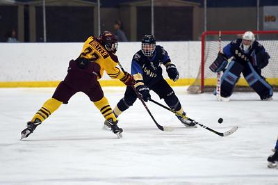 hockey_4780