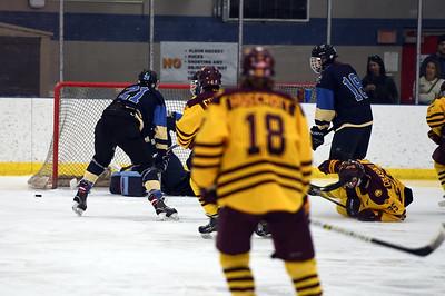 hockey_4788