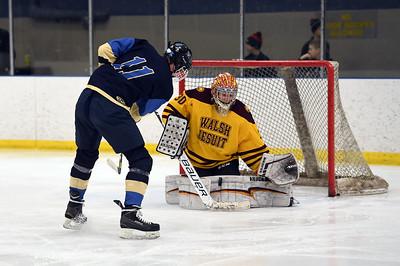 hockey_4930