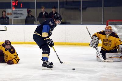 hockey_4927