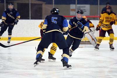 hockey_5322