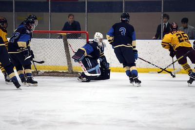 hockey_5392