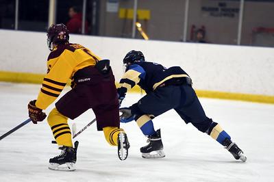 hockey_5455