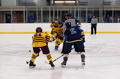 hockey_5416