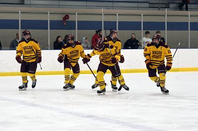 hockey_5404