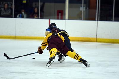 hockey_5457