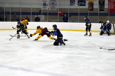 hockey_5285