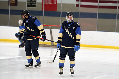 hockey_5201