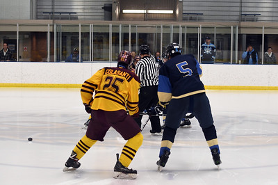 hockey_5216