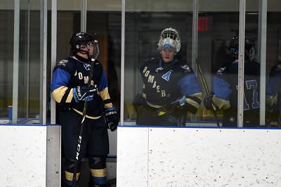 hockey_5145