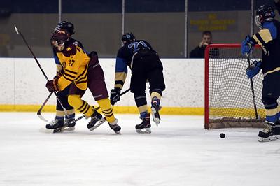 hockey_5396