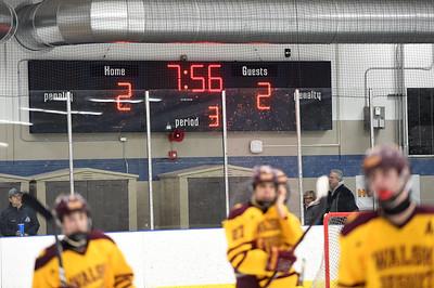 hockey_5411