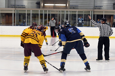 hockey_5214