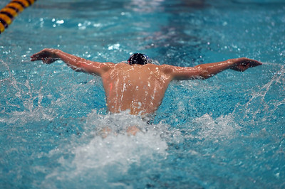 swimming_8159
