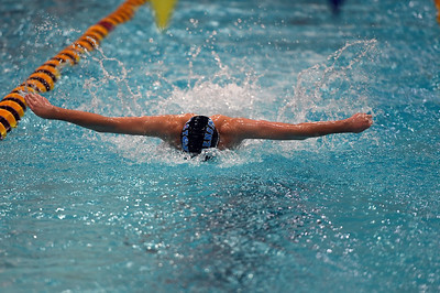 swimming_8119