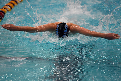swimming_8135
