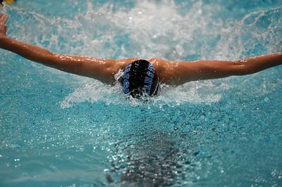 swimming_8142