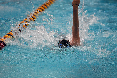 swimming_8051
