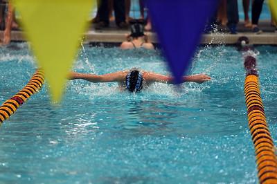 swimming_8109