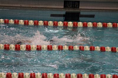 swimming_4735