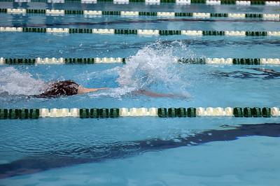 swimming_1525