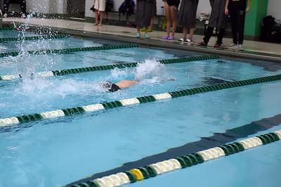 swimming_1527