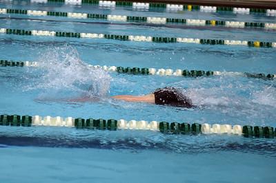 swimming_1530