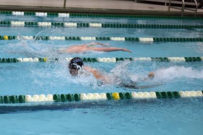 swimming_1529