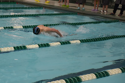 swimming_1528