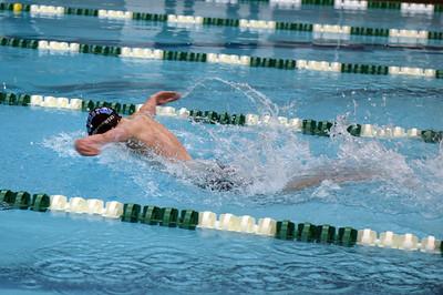 swimming_1531
