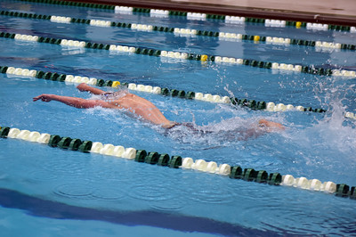 swimming_1532