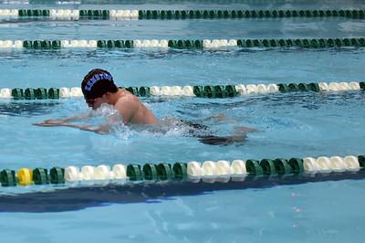 swimming_1520
