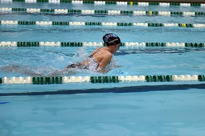 swimming_1486