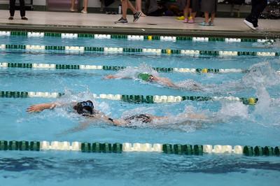 swimming_1547