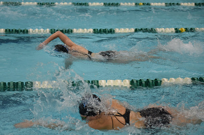 swimming_1548