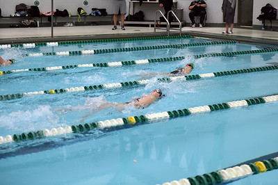 swimming_1482