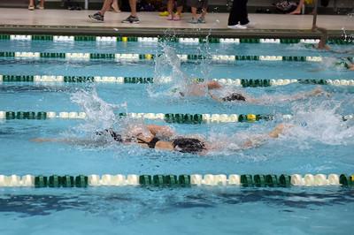swimming_1545