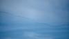_2090003 Distant Migrating Sandhill Cranes_5184x2916_Auto Contrast_60%_Desaturation_1500x844