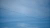 _2090003 Distant Migrating Sandhill Cranes_5184x2916_Auto Contrast_60%_Desaturation