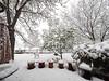 _4294107 April 29 Snow_5184x3888