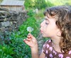 blowing dandelion girl in rural green outdoor