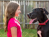 great dane and kid girl looking eachother profile
