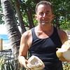 Freshly harvested Coconut