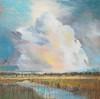Vanishing Wetlands-Jardine