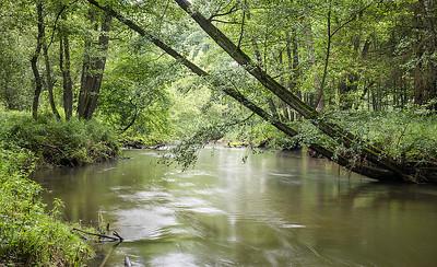 Rzeka Ruda, 012